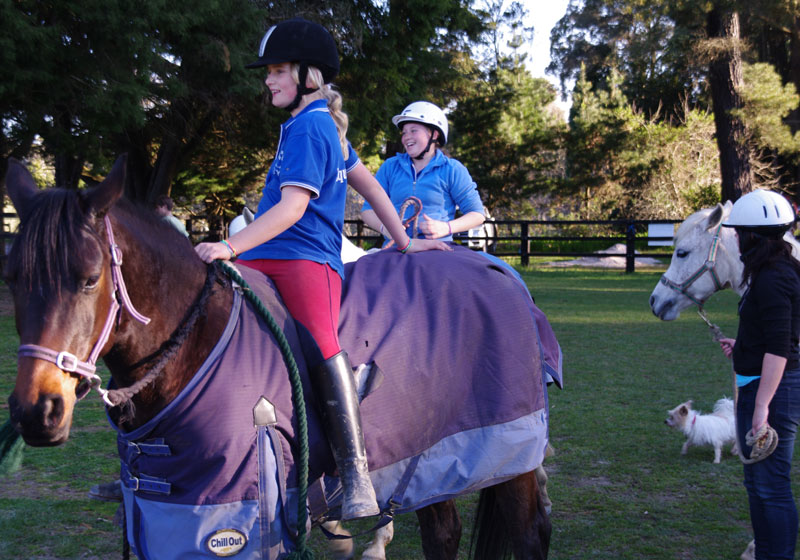 Fitzroy Equestrian Centre Agistment Horse Riding Kids